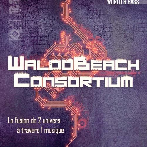 Waloobeach/WB CONSORTIUM's avatar