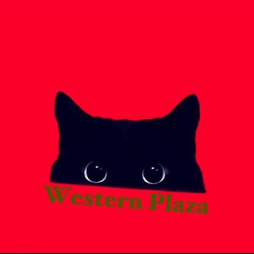 Western Plaza's avatar