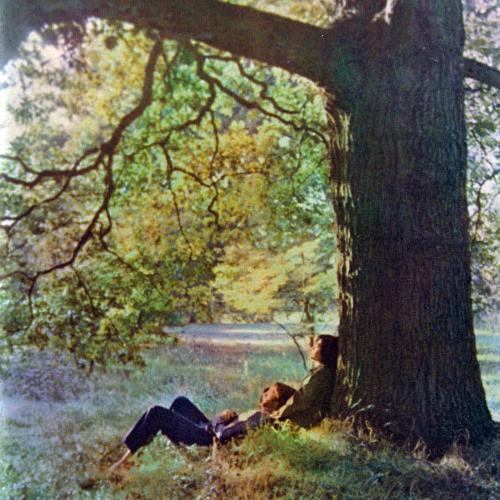 I Found Out - John Lennon cover - Plastic Ono Man