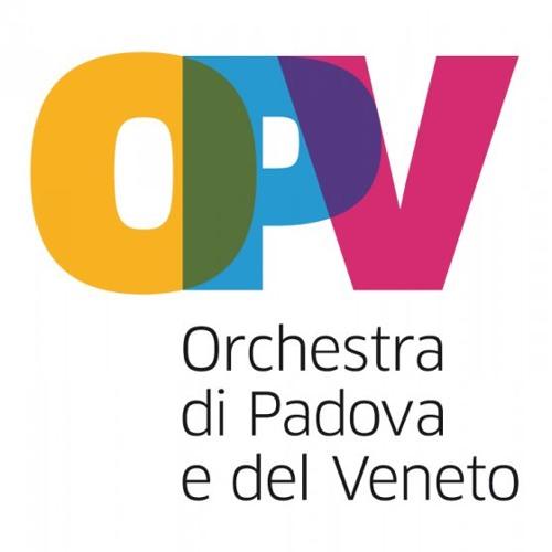 Brahms Sinfonia n. 1 op. 68  Andante sostenuto - OPV - M. Angius