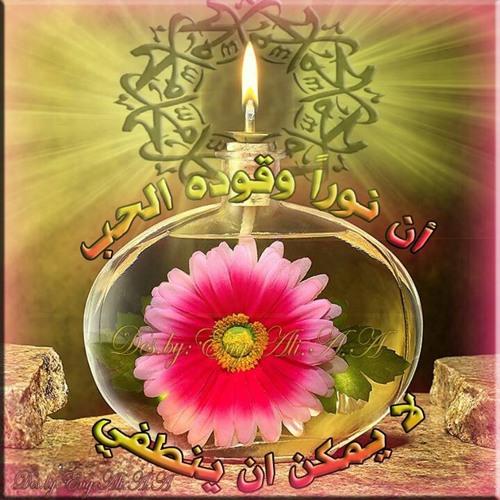 user796433957's avatar