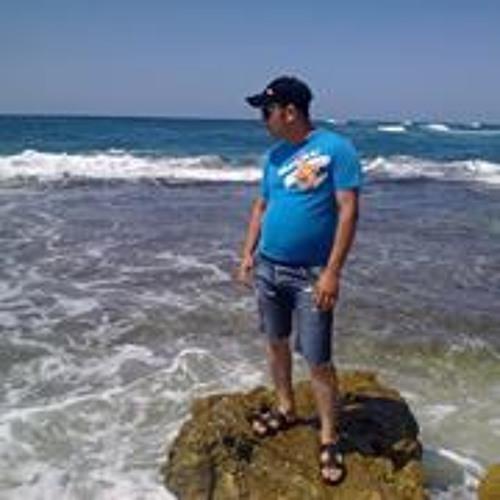 Amr Fasel's avatar