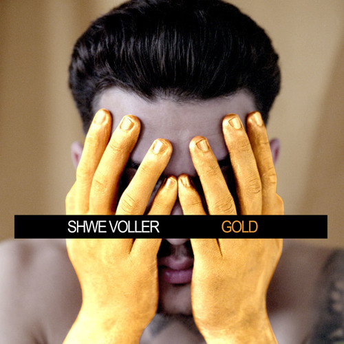 ShweVoller's avatar