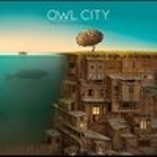 owl city:)'s avatar