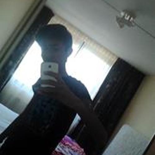 Sandhos Hibma's avatar