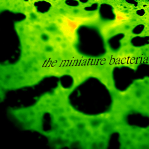 The Miniature Bacteria's avatar