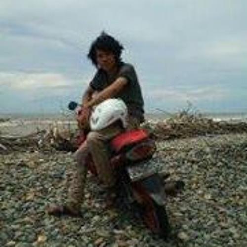 Fikri Dwi Putra's avatar