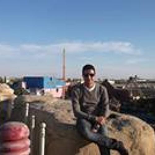 Ahmed Elshazly 14's avatar