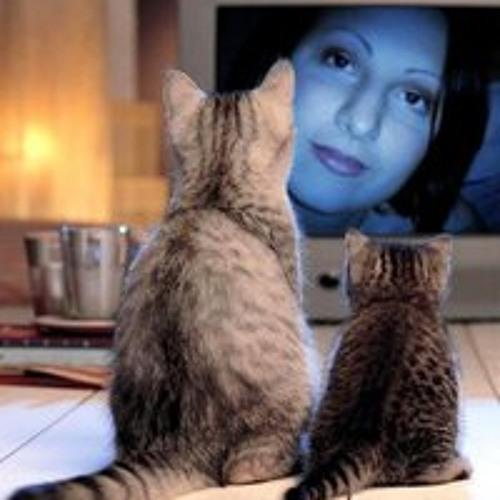 Elisa Sgarzi's avatar