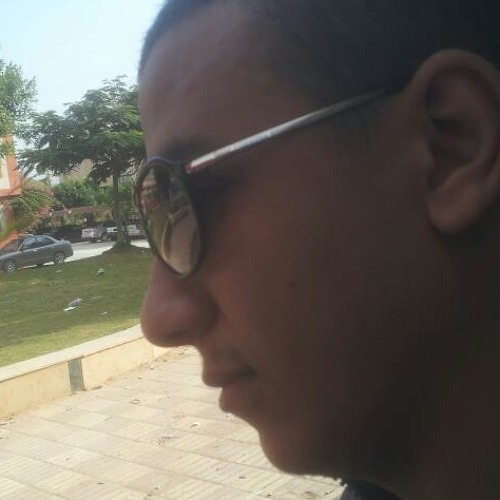 ahmed abd L fattah's avatar