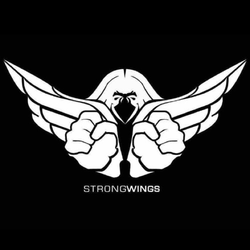 STRONGWINGS's avatar