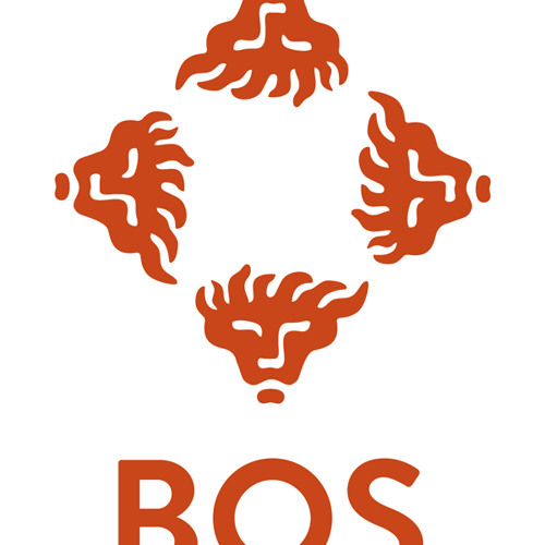 bosrtv's avatar