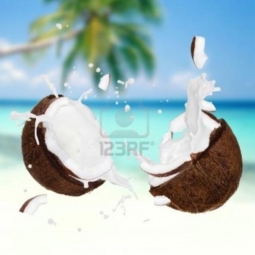 trelococonuts's avatar