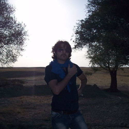 Modjtaba Behrad's avatar