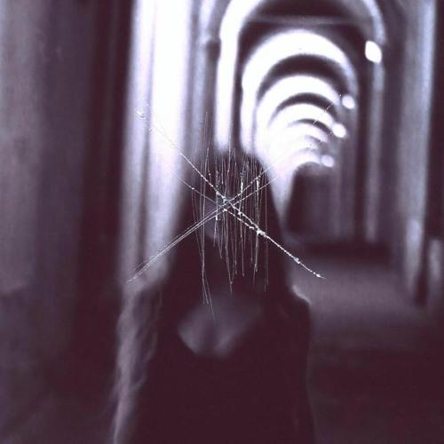 Alice Cesari's avatar