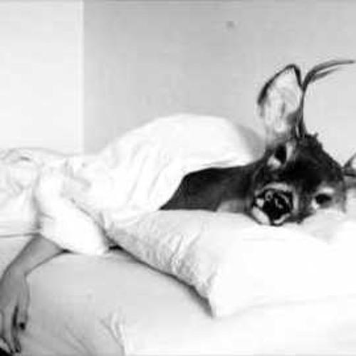Casanova Deer's avatar