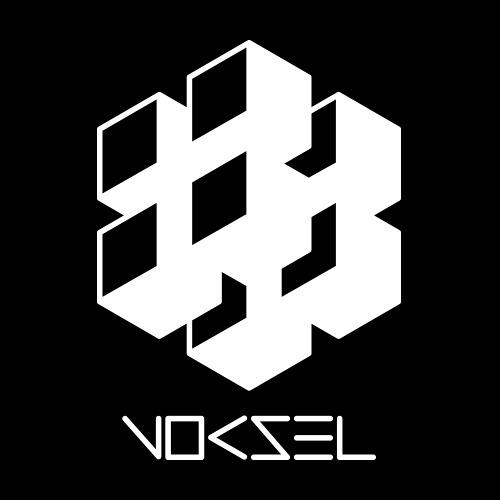 Voksel's avatar