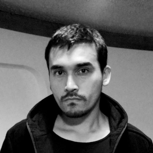 PiterDeVries's avatar