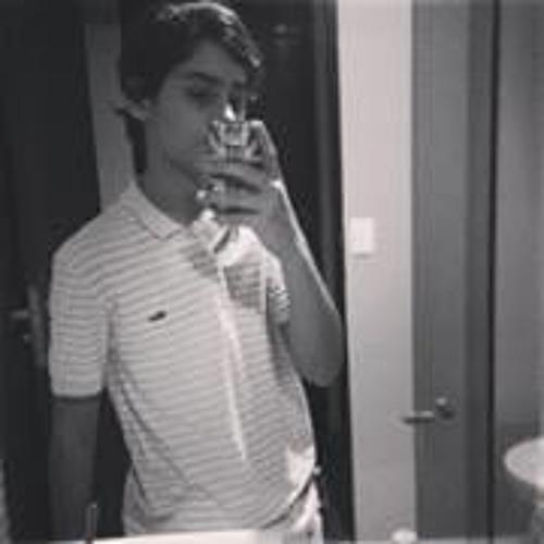 Luis Vinicius Mota's avatar