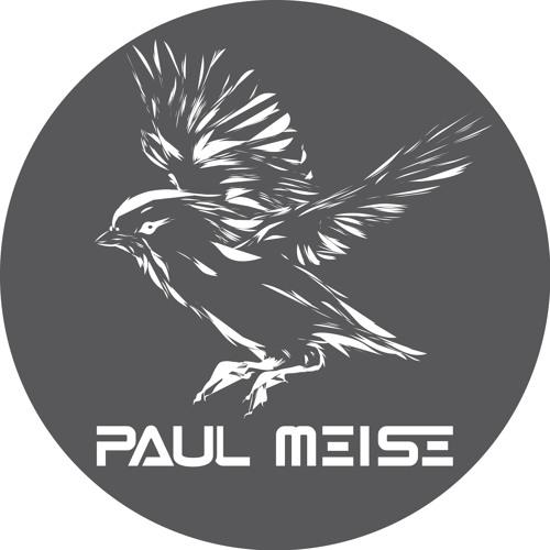 Paul Meise's avatar