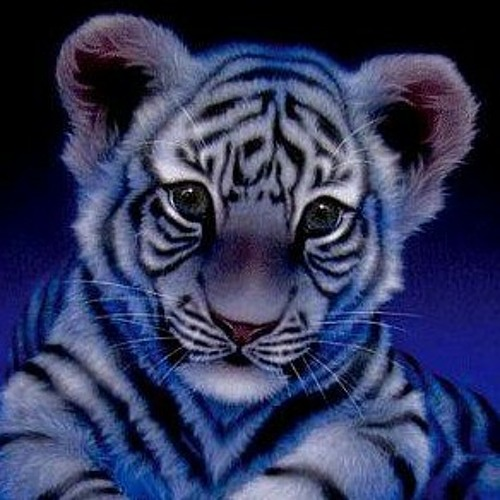 gallagher67's avatar