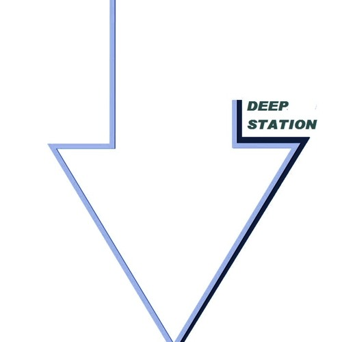 Deep Station's avatar