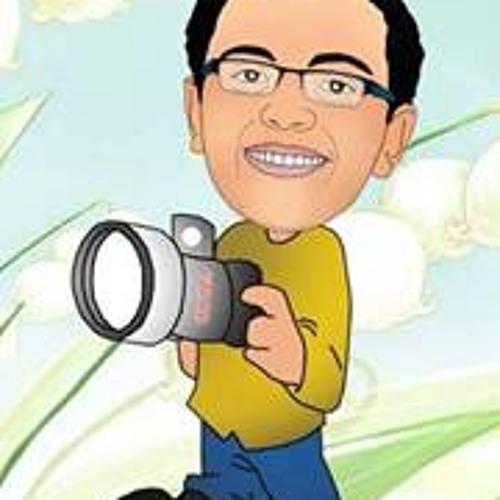 Pola Adel Mahrous's avatar