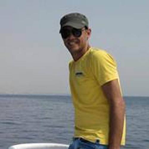 Mohammed Abu Hassanien's avatar