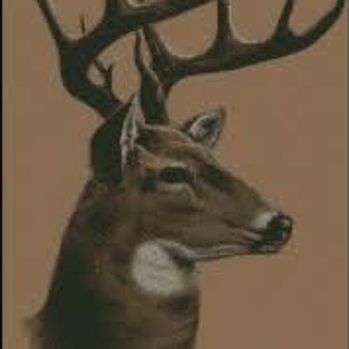 Thunderdeer's avatar