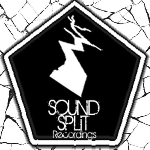 Sound Split Recordings's avatar