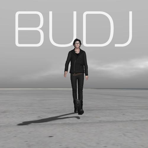 BUDJ's avatar