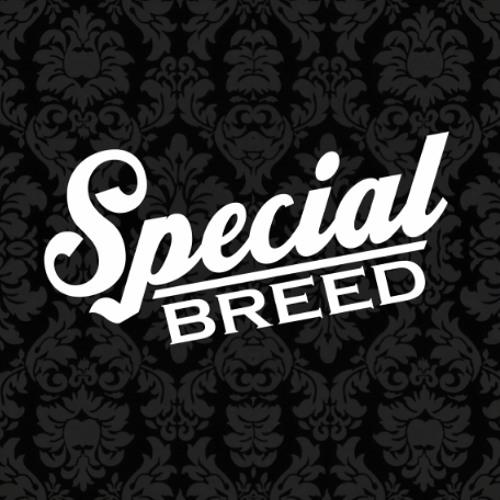SpecialBreed's avatar