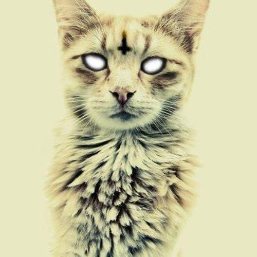 DNB-CAT's avatar