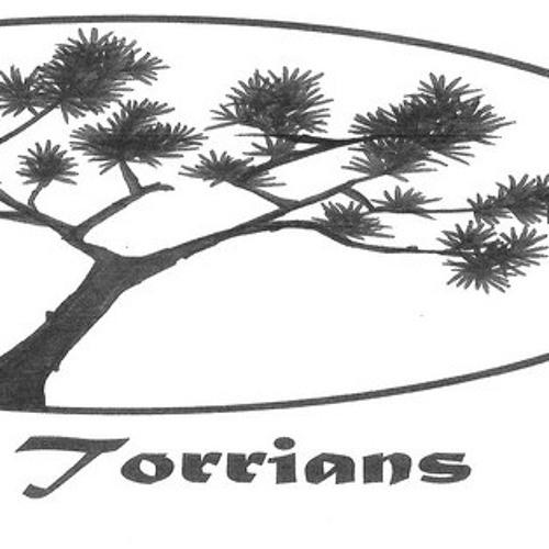 The Torrians - Torrians Mixtape - 08 So Simple