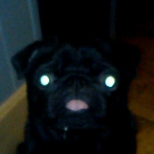 rutzxelite's avatar