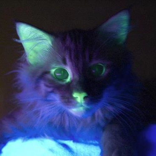 mcrom901's avatar