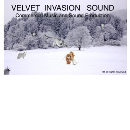 VELVET INVASION SOUND's avatar