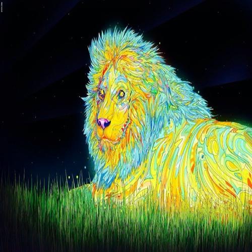 Chonnolly's avatar