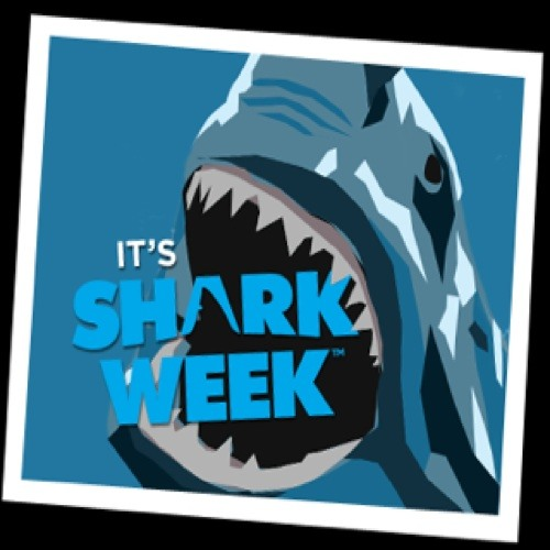 sharkweek89's avatar