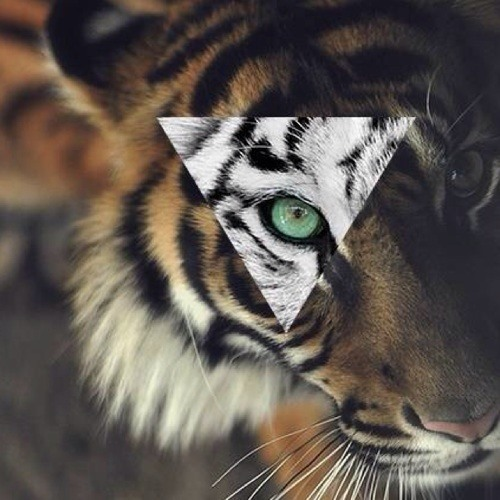 mgoodluck's avatar