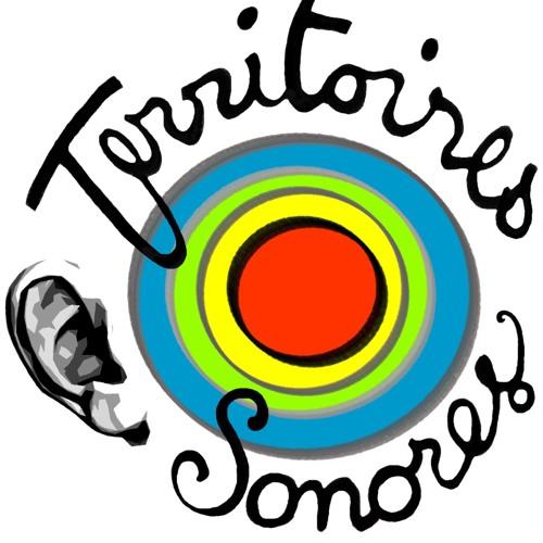 Territoires Sonores's avatar
