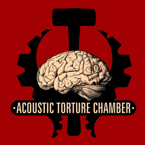 Acoustic Torture Chamber's avatar