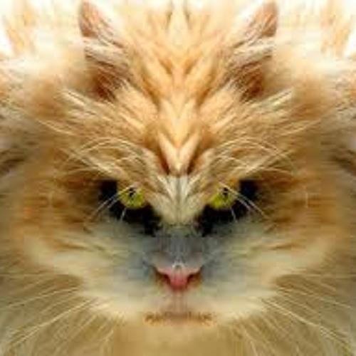 agreedo's avatar