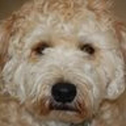 Hunter Ramsay 1's avatar