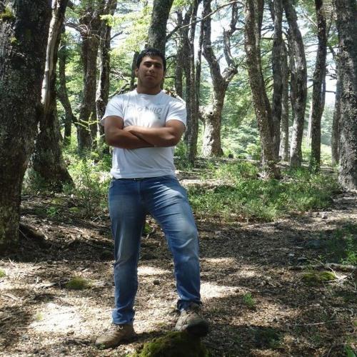 Felipe Andres Fernandez 4's avatar