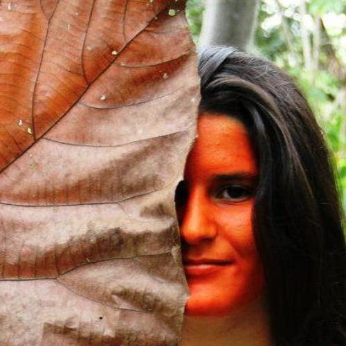 Estela Ceregatti's avatar