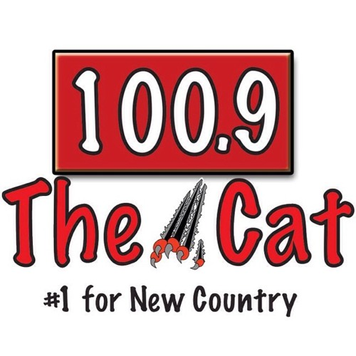 100.9 THE CAT's avatar