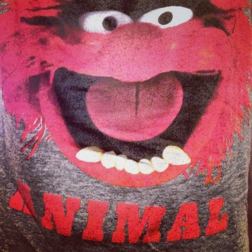 Animal_toon's avatar