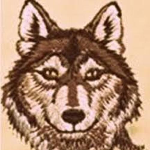 synth dogg's avatar