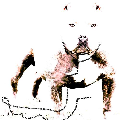 vocanoe's avatar